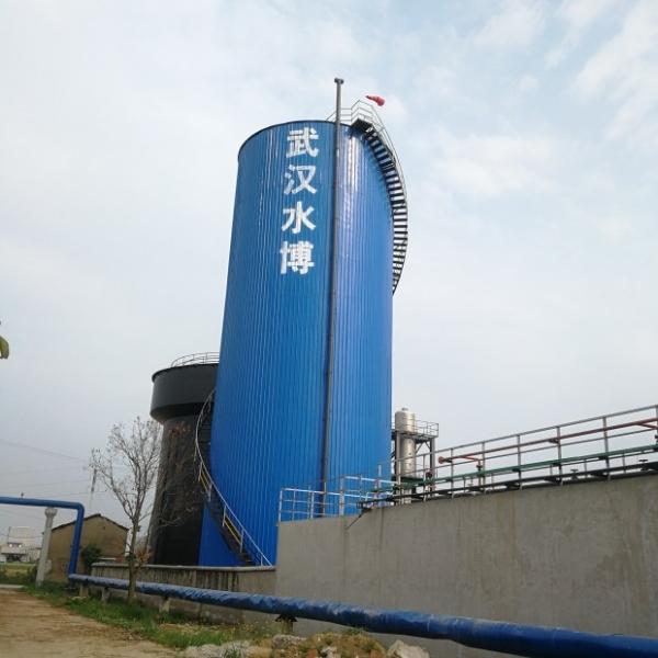 湖北志诚化工有限公司污水处理项目